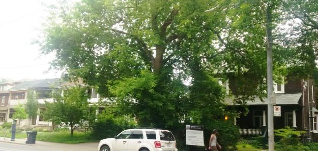 1327-1329-Queen-East-Toronto